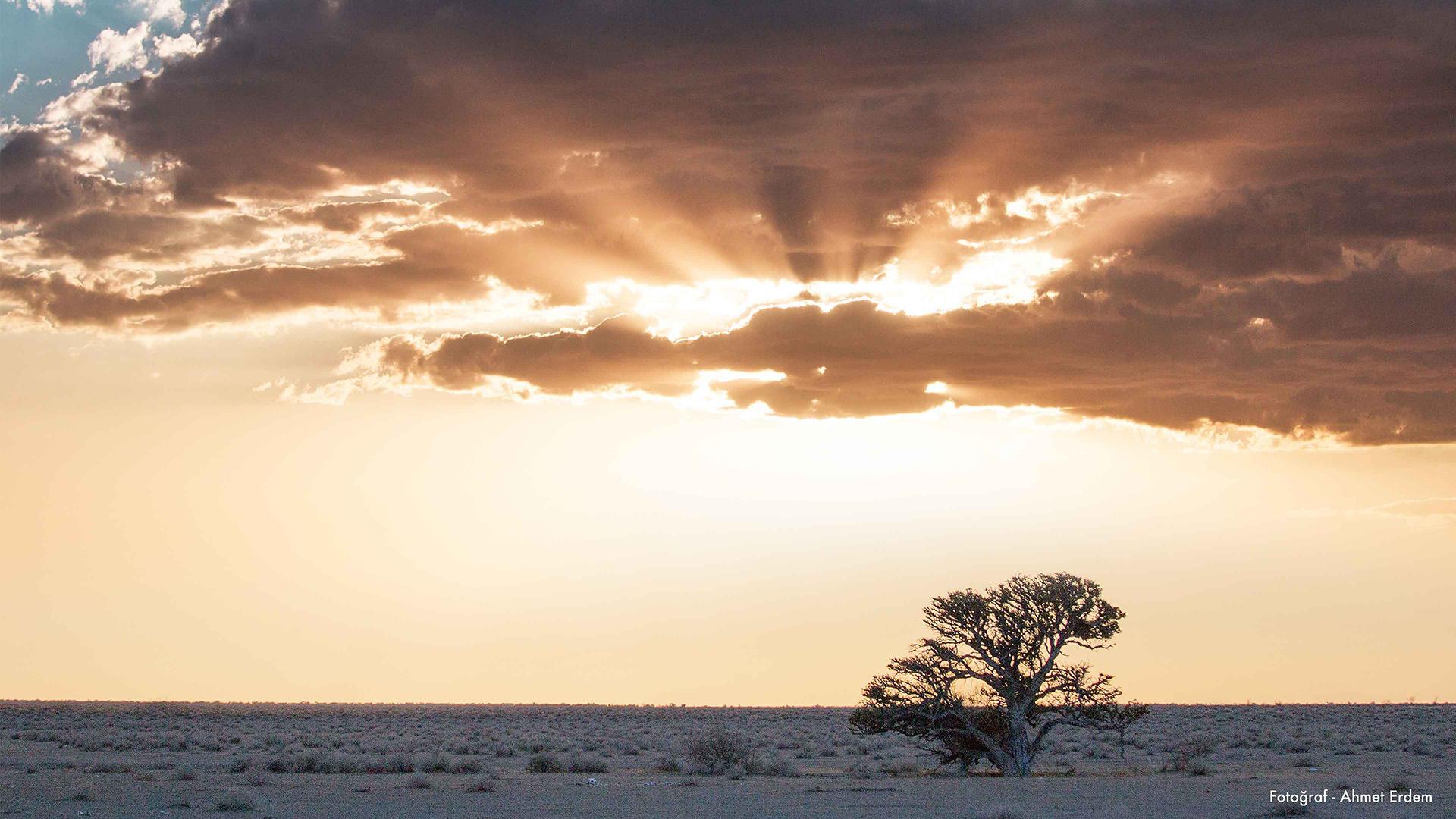 Afrika'nın Bir Ucu: Namibya