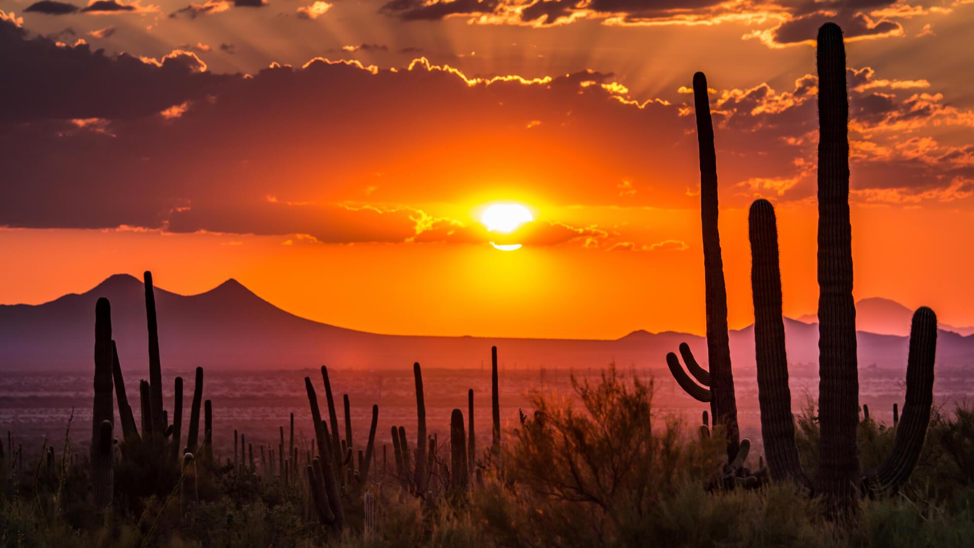 Wild Wild West, Kızılderililerle Tanışma Vakti
