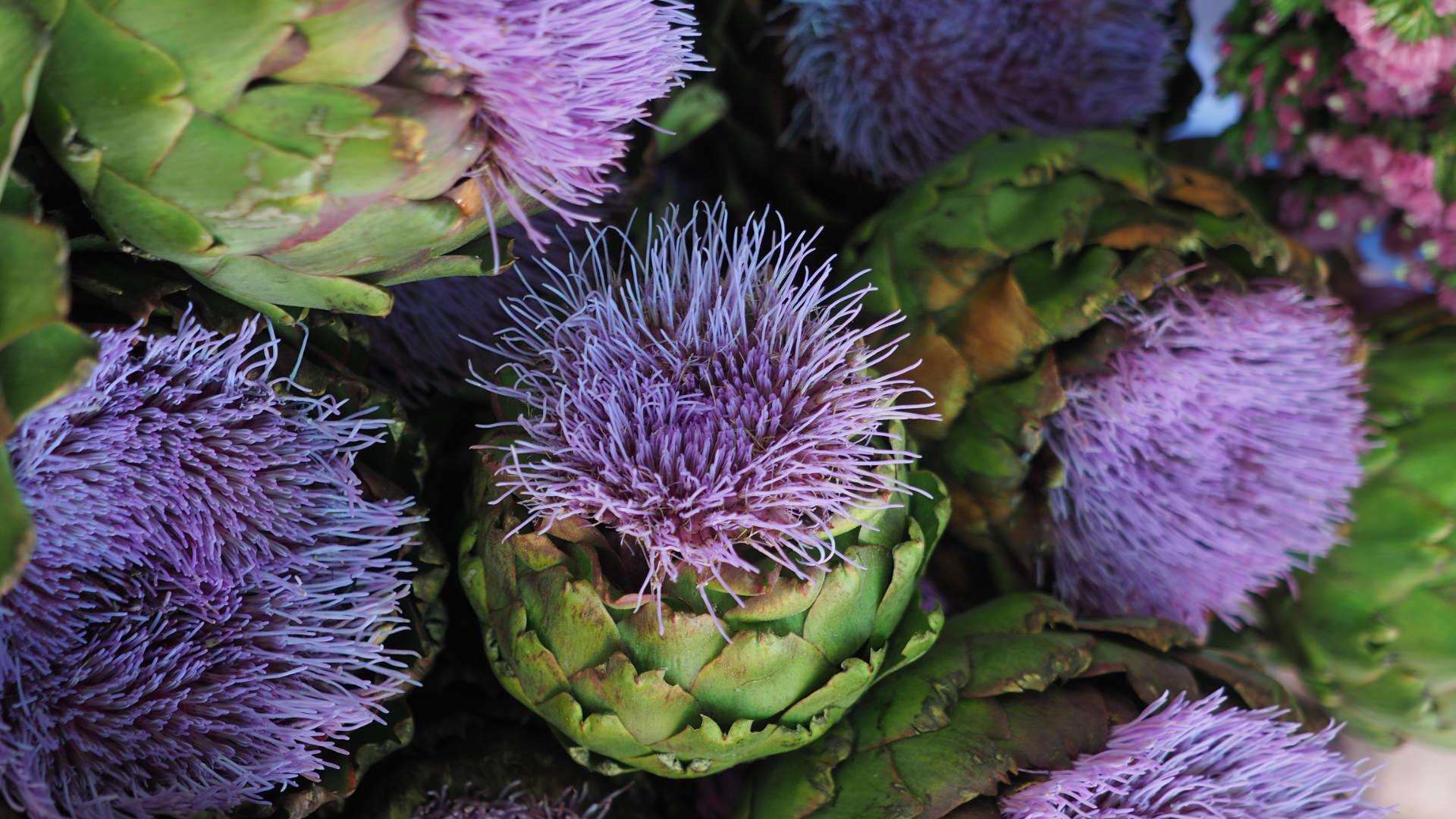 Anadolu'da Sadece Bahar Aylarında Yiyebileceğiniz 7 Yemek