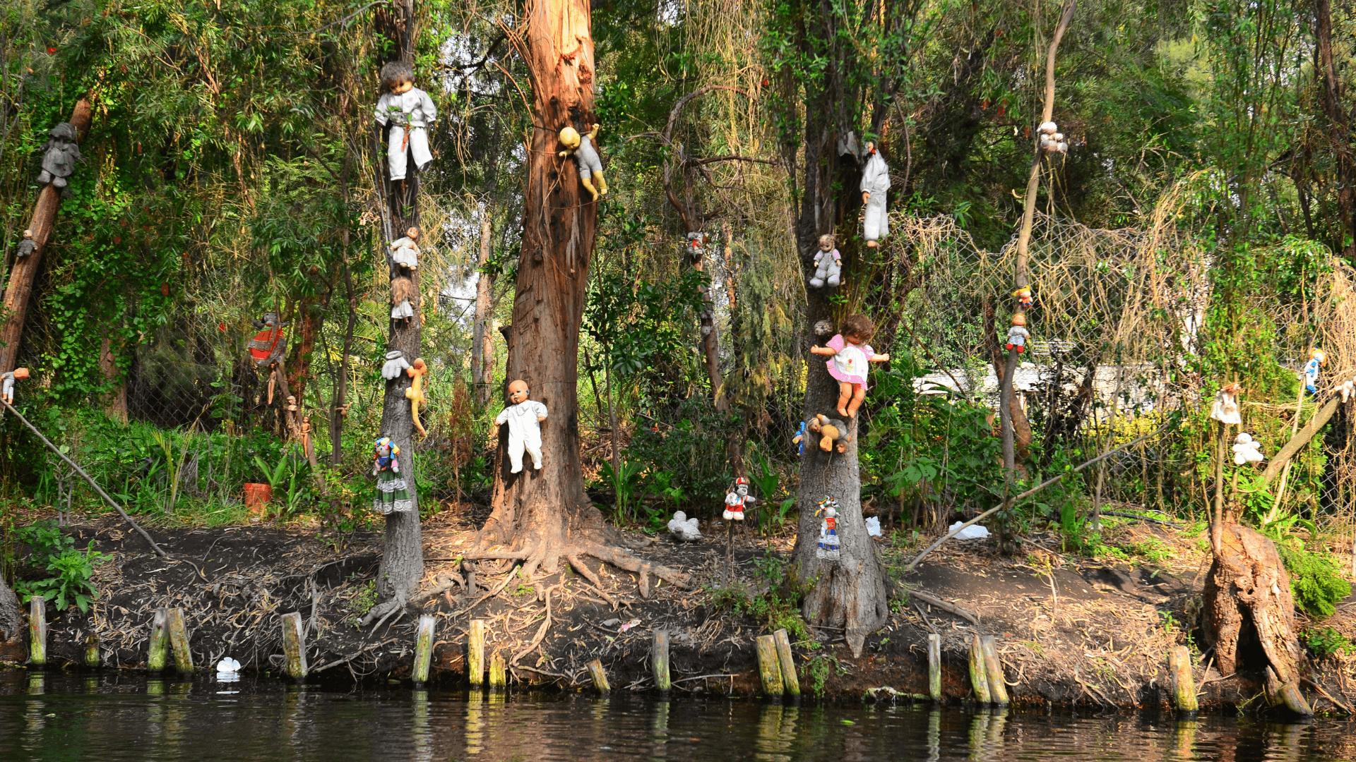 Oyuncak Bebekler Adası, La İsla De Las Munecas, Mexico City