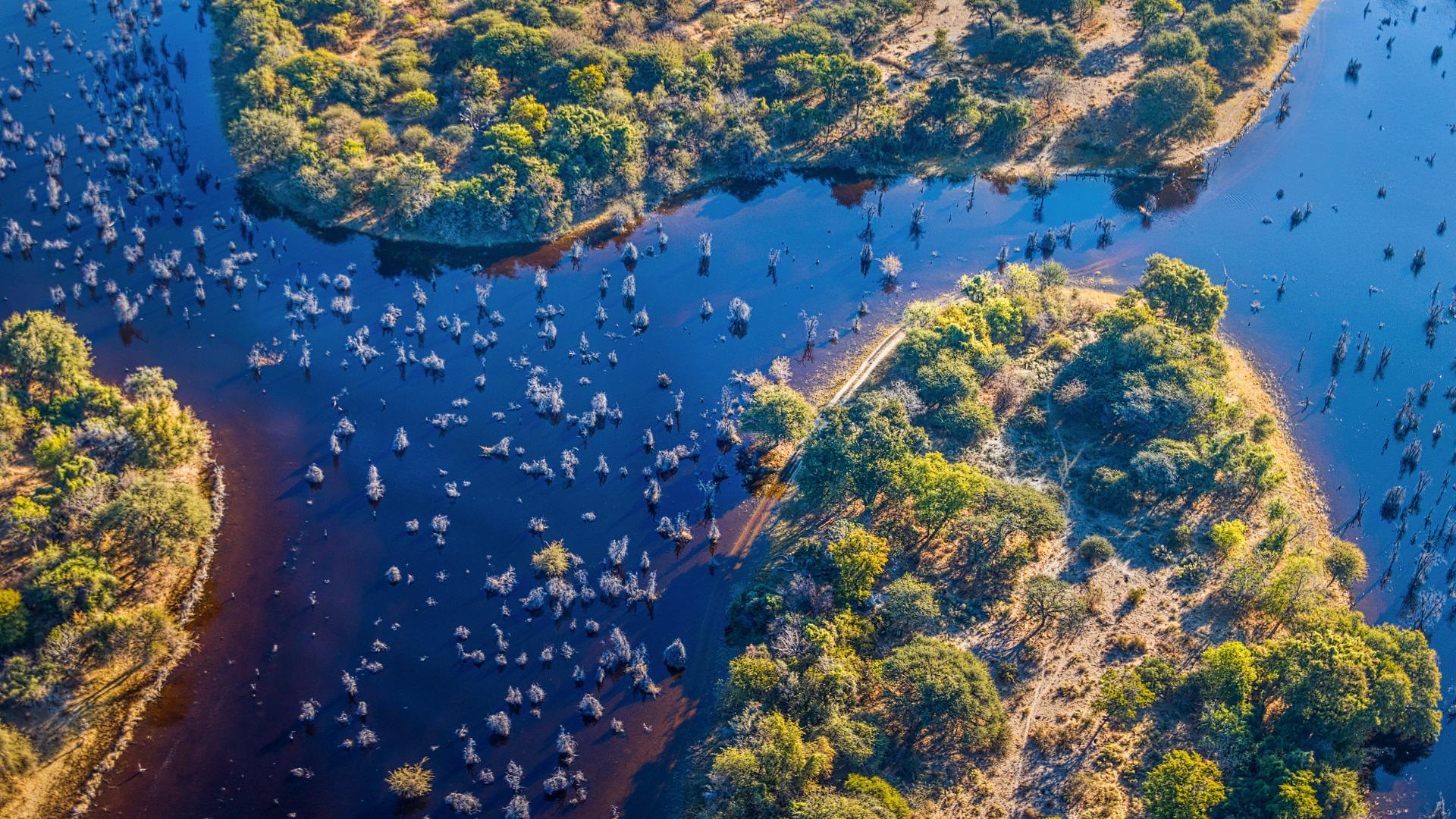 Doğanın Biraz Vahşi Epey Ahenkli Düzeniyle Tanışma: Botsvana