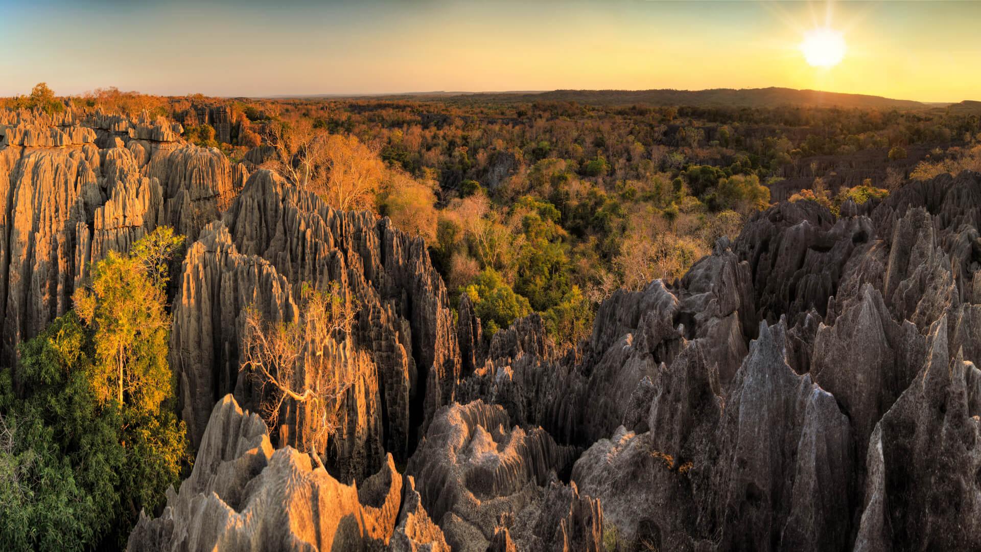 Kayalardan Oluşan Bir Orman: Tsingy de Bemaraha Millî Parkı