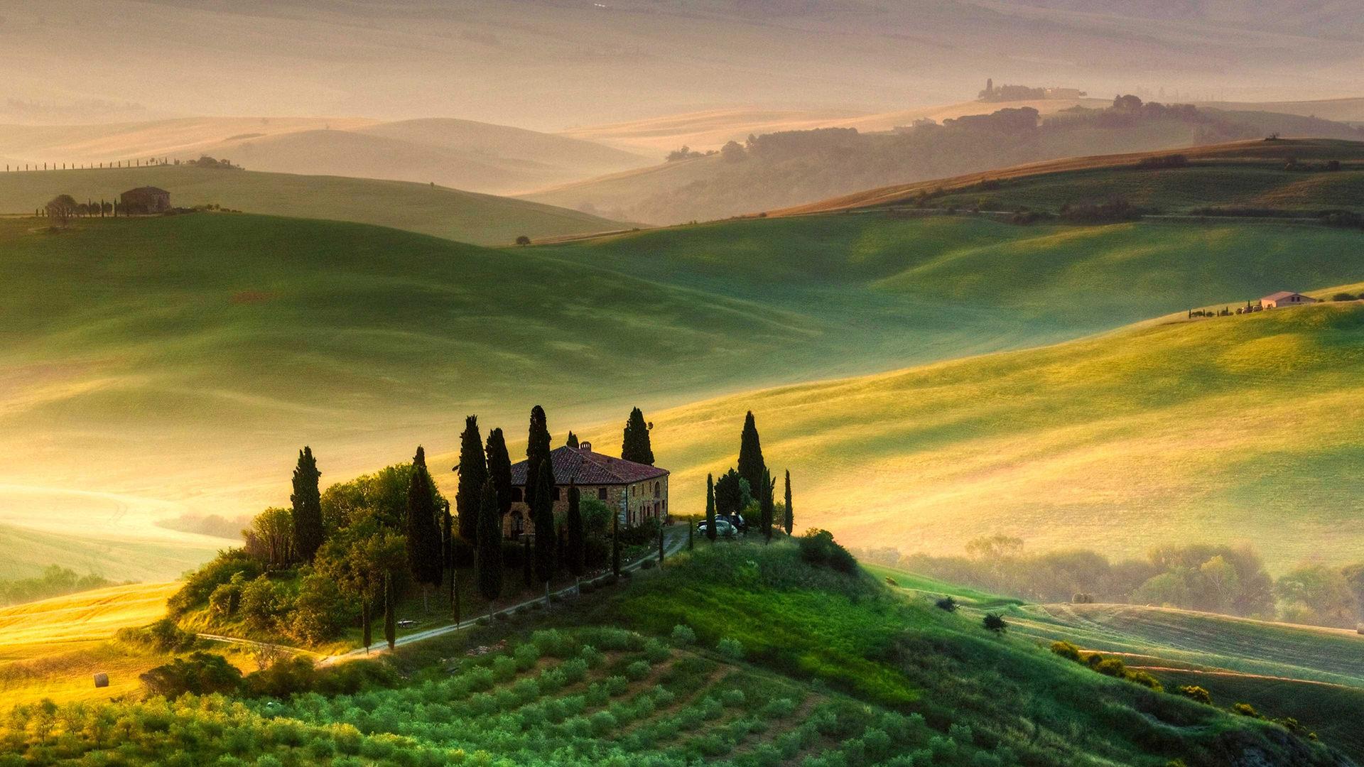 Bir Toskana Klasiği: Frescobaldi Bağları
