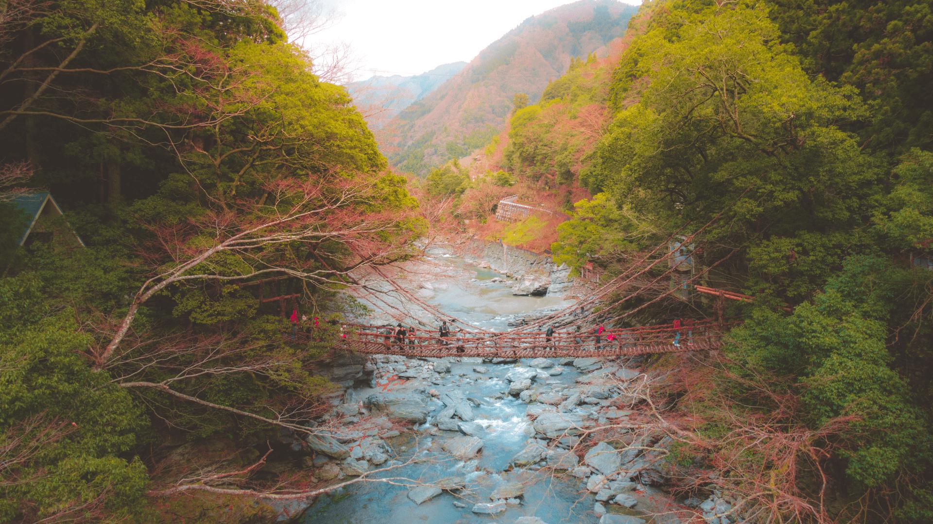 Anıları Dev Kuklalarla Yaşayan Köy, Nagoro, Japonya