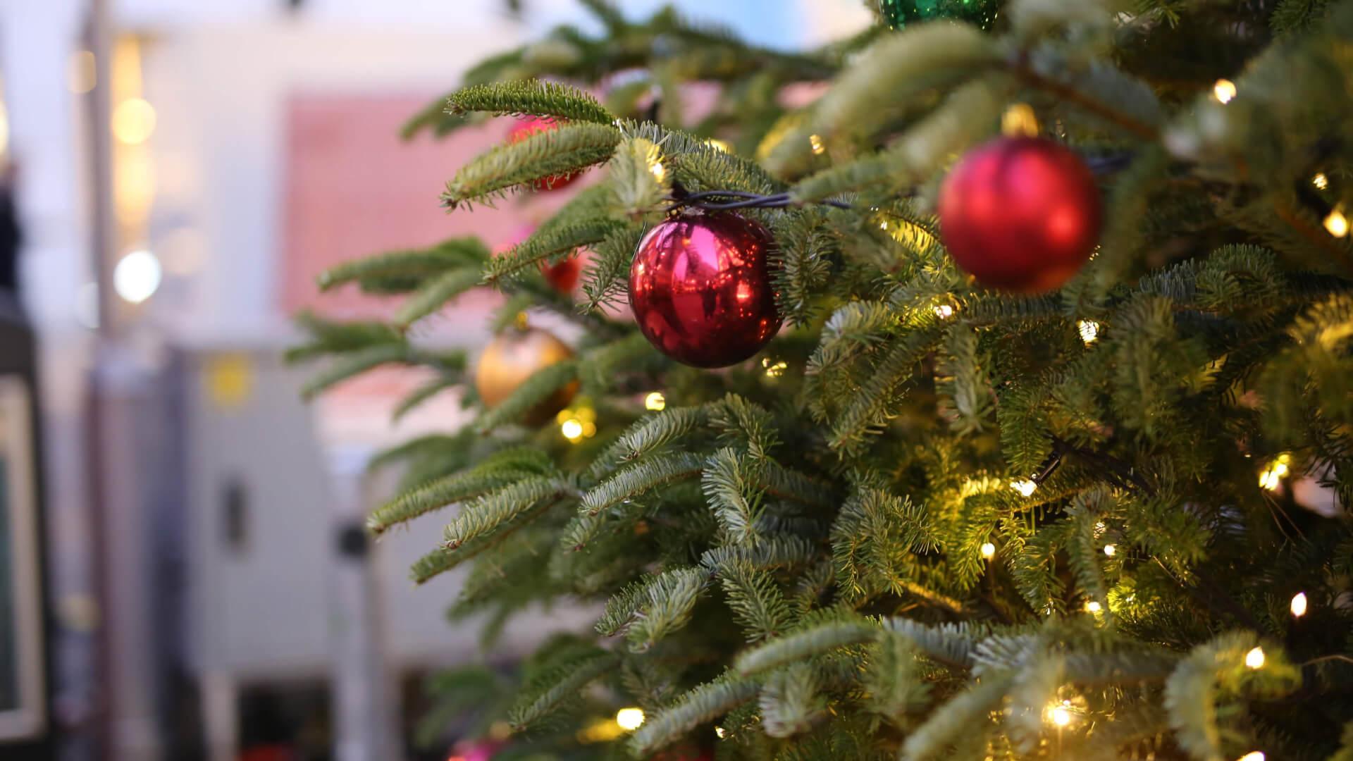 Bremen: Bir Noel Macerası