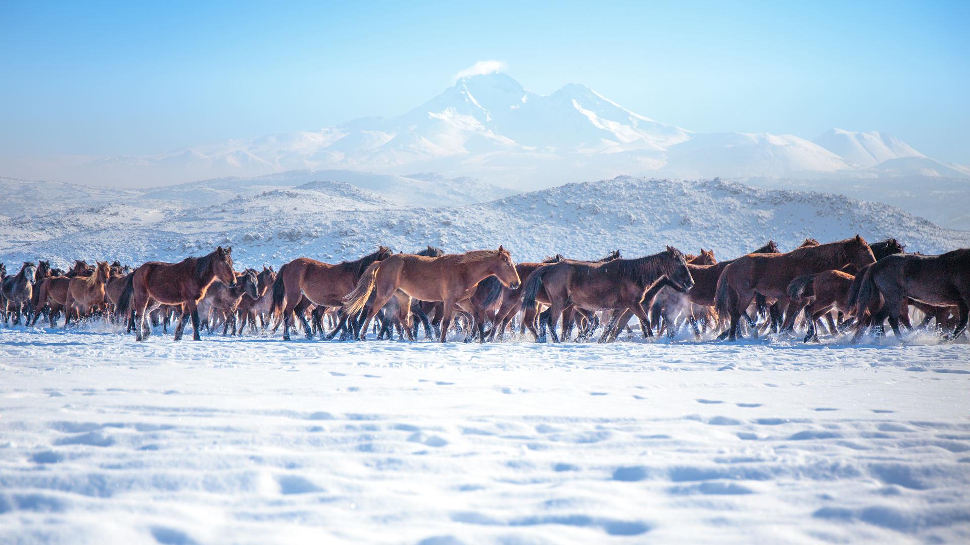 Kış Büyüsü:Türkiye'de Görülmesi Gereken Yerler