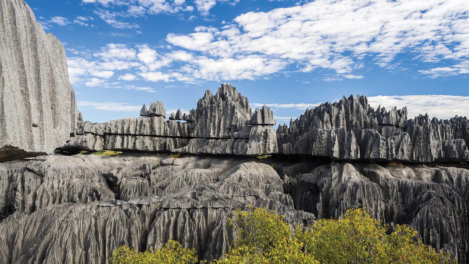 Dünyanın Geri Kalanından Farklı Bir Ada: Madagaskar