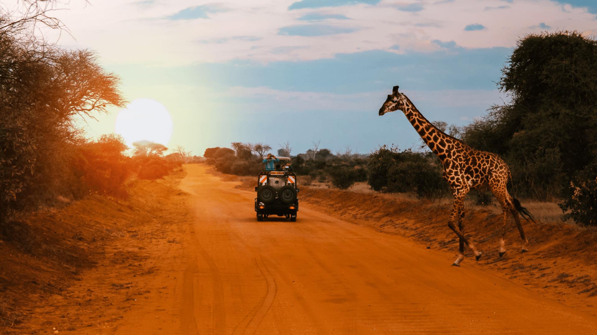 Doğanın Egemenliğinde, Kabilelerin Yanıbaşında, Kenya