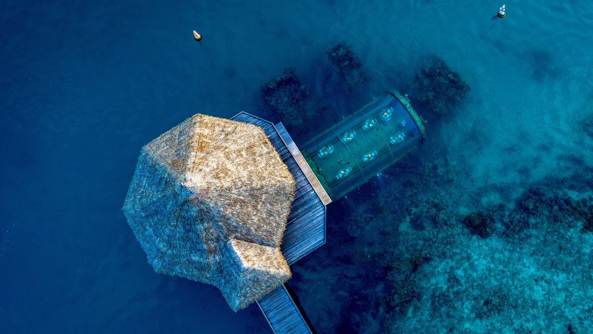 Denizin Altında Mışıl Mışıl, The Muraka
