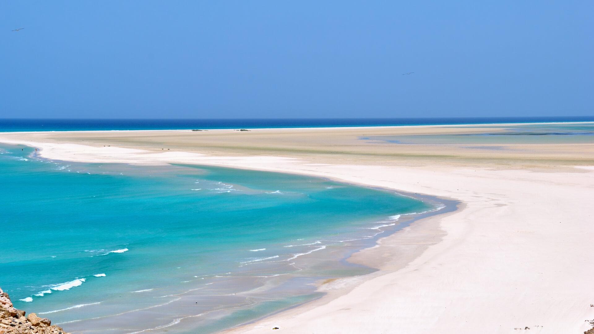 Doğası Başka Bir Dünyaya Ait Sanki: Socotra Adası, Yemen