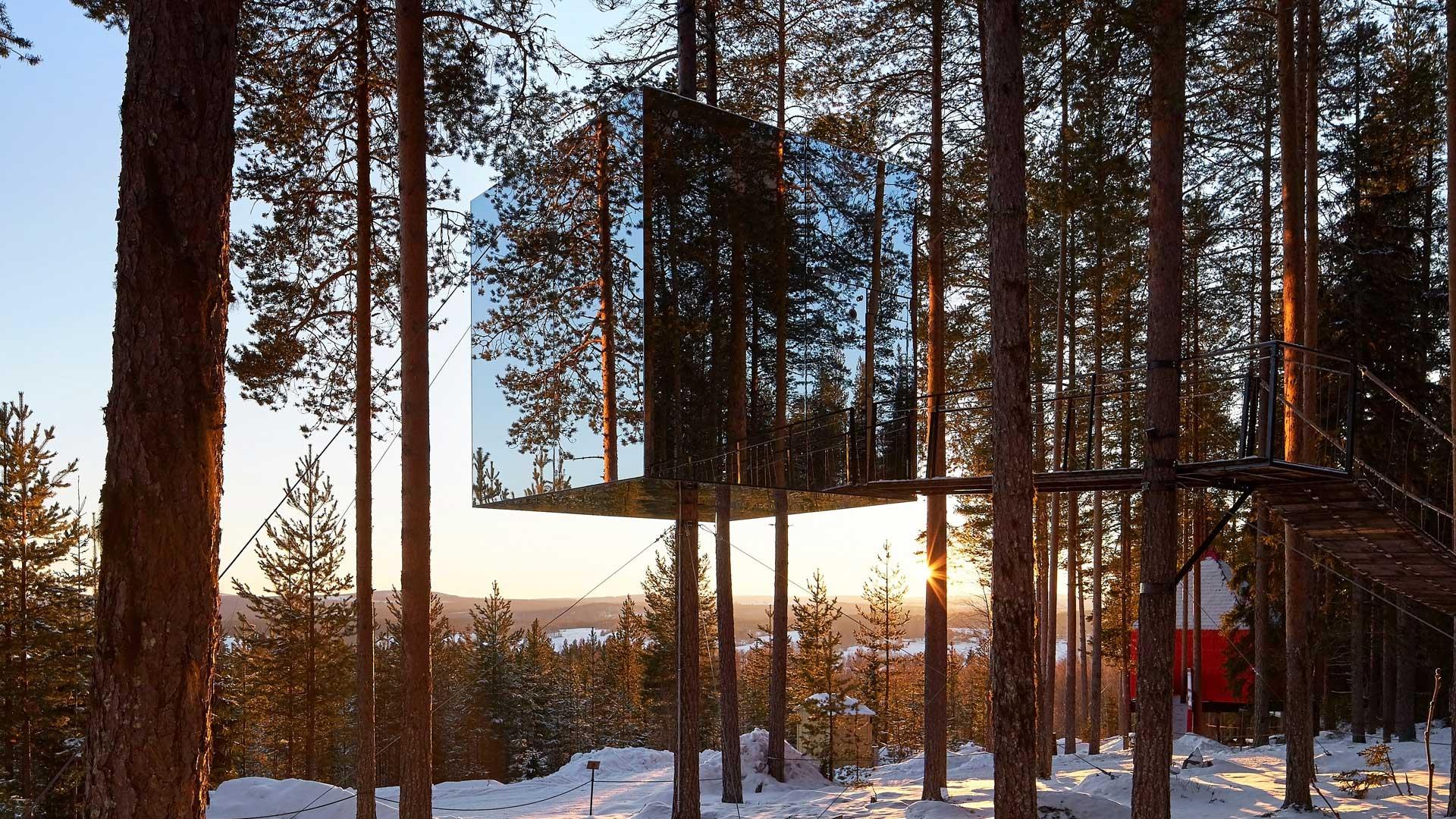 Ağaç Evlerde Konaklama Deneyimi