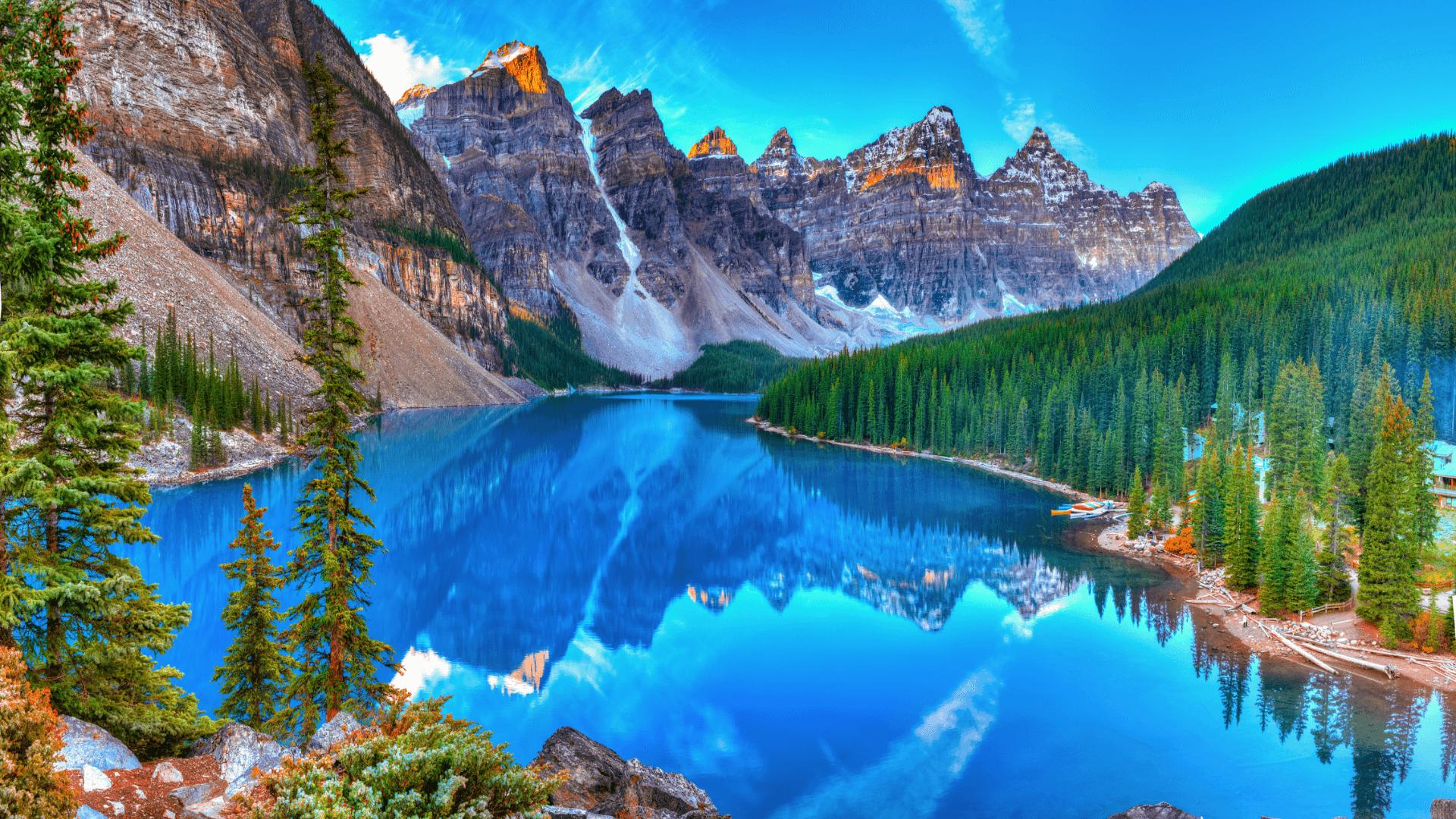 Kuzey Amerika'da Sonsuz Yeşilin Ortasında