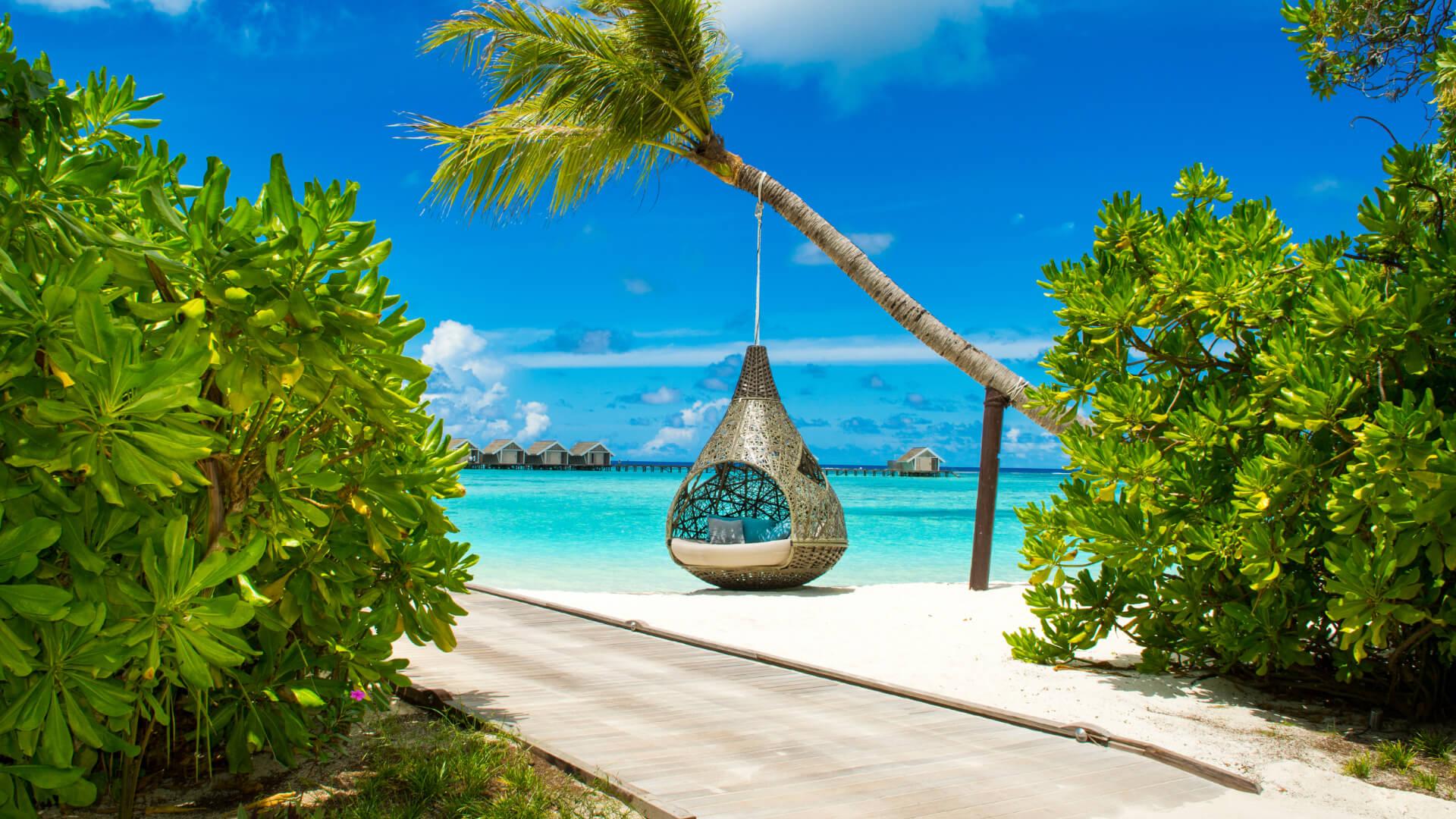 Maldivler Ada Rehberi