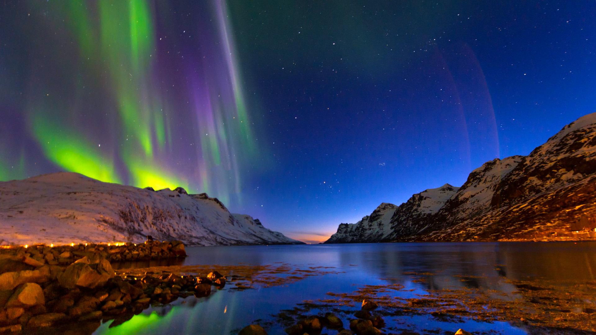 Tilki Kuyruğu Peşinde; Tromso